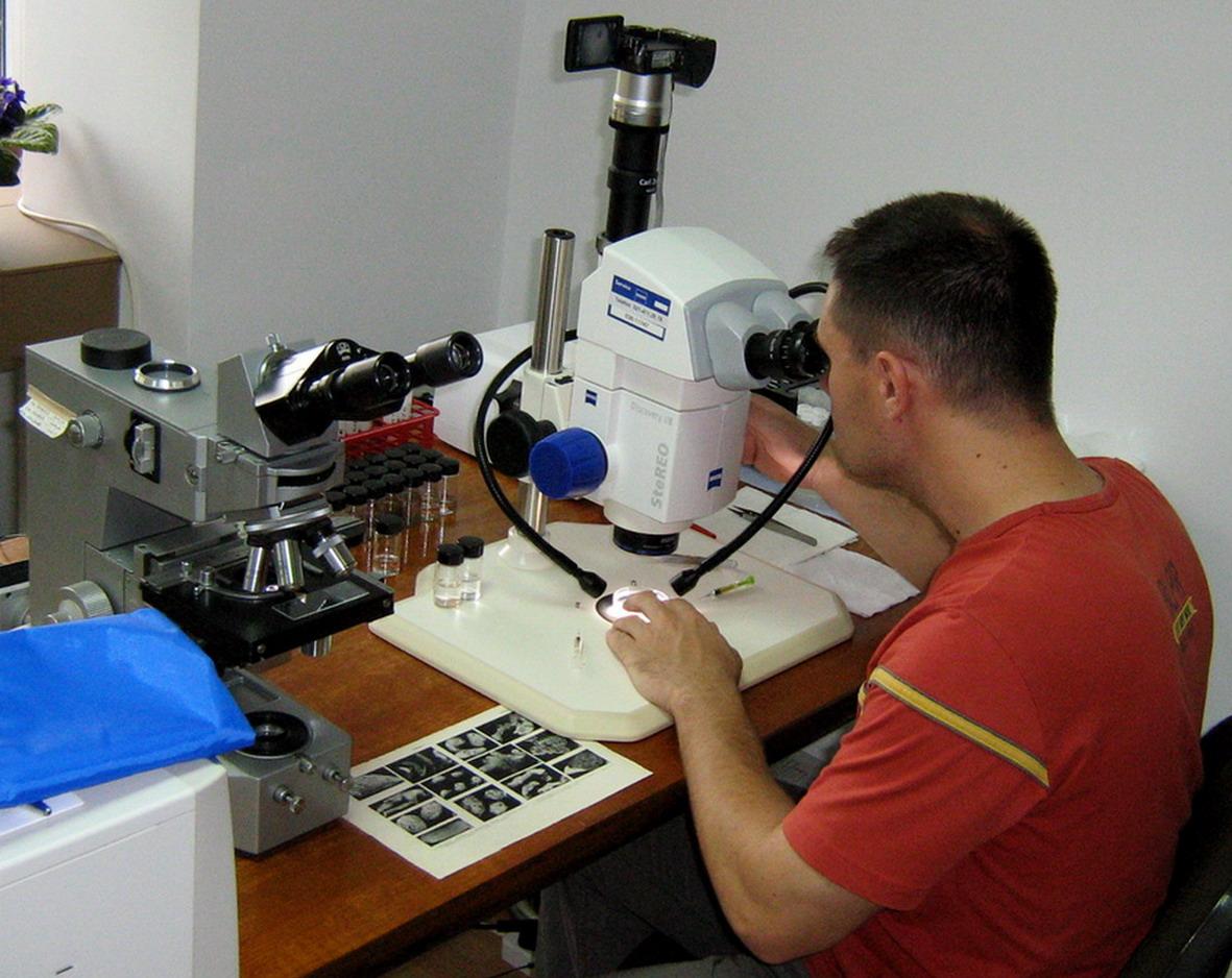 Colectivul de biologie marină analizează cantitativ și calitativ probele biologice